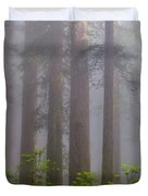 Redwoods By Crescent City 8 Duvet Cover