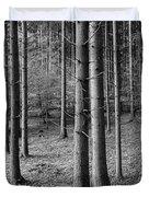 Road Passing Through Forest, Stuttgart Duvet Cover