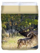Rocky Mountain Bull Elk Bugeling Duvet Cover by Nathan Bush