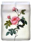 Rosa Inermis Duvet Cover