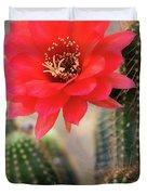 Rose Quartz Cactus Flower  Duvet Cover