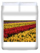 Row After Row After Row Of Tulips Duvet Cover