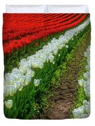 Rows Of White And Red Tulips Duvet Cover