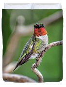 Ruby-throated Hummingbird In All His Glory Duvet Cover