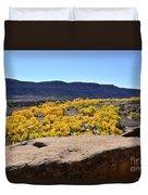 Sandstone Above Golden River Desert Landscape Duvet Cover