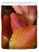 Sassafras Autumn Duvet Cover
