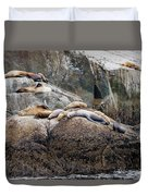 Sea Lions Sleeping On Rock Duvet Cover