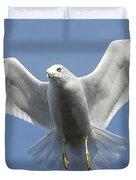 Seagull In Flight Duvet Cover
