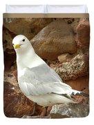 Seagull On Rock Duvet Cover