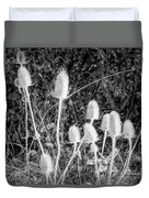 Silver Thistle Seed Pods Duvet Cover