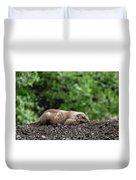 Sleeping Prairie Dog Duvet Cover by Scott Lyons