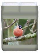 So. Bullfinch Duvet Cover