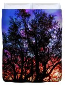 Sonoran Sunrise Ironwood Silhouette Duvet Cover