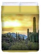Sonoran Sunrise Duvet Cover