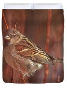 Sparrow In The Sunshine Duvet Cover