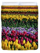 Spectacular Rows Of Colorful Tulips Duvet Cover