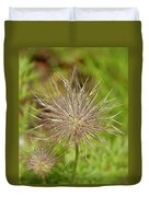 Spiky Plant Pulsatila Halleri Duvet Cover