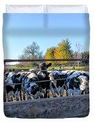 Steers Duvet Cover