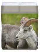 Stone's Sheep Ram Duvet Cover