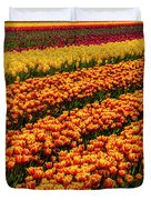 Stunning Rows Of Colorful Tulips Duvet Cover