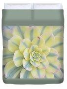 Succulent Aeonium Sunburst Duvet Cover