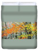 Sugar Maple Acer Saccharum In Autumn Duvet Cover