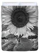 Sunflowers 10 Duvet Cover