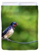 Swallow  Hirundo Rustica  Duvet Cover