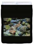 Three Mallard Ducks Swimming In A Stone Filled Brook. Duvet Cover