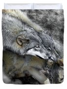 Timber Wolves Up Close Duvet Cover