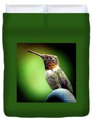 Totem Animal Book Hummingbird Duvet Cover