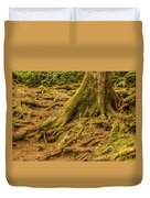 Trail Of Roots Duvet Cover
