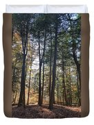 Trees And Shadows 2 Duvet Cover
