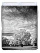 Trees In Florida Duvet Cover