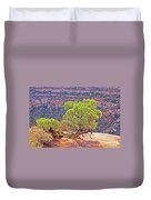Trees Plateau Valley Colorado National Monument 2871 Duvet Cover