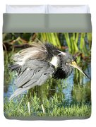 Tricolored Heron With Ruffled Feathers Duvet Cover