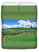 Vineyard, Whangarei, Northland, New Duvet Cover