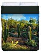 Vislumbre De Sonoran H1833 Duvet Cover by Mark Myhaver