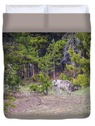 W755 Duvet Cover by Joshua Able's Wildlife