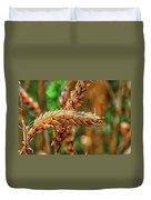 Wheat Duvet Cover