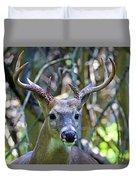 White Tailed Buck Portrait Duvet Cover