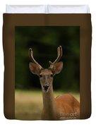 White-tailed Deer - 8282-2 Duvet Cover