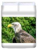 Wisconsin Bald Eagle Duvet Cover