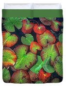 Yellow Pond Lily, Weminuche Wilderness Duvet Cover