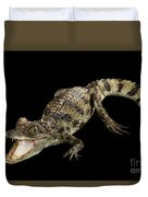 Young Cayman Crocodile, Reptile With Opened Mouth And Waved Tail Isolated On Black Background In Top Duvet Cover