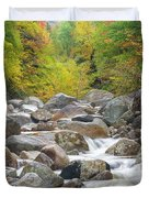 Zealand River - White Mountains, New Hampshire Duvet Cover by Erin Paul Donovan