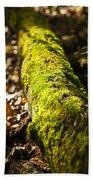 Dead Log With Moss Bath Towel