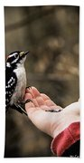 Downy Woodpecker In Hand Bath Towel