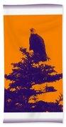 Eagle Scout At Sunset Bath Towel