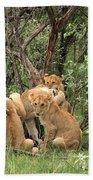 Masai Mara Lion Cubs Hand Towel